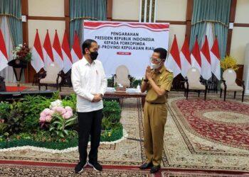 Wakil Wali Kota Batam, Amsakar Achmad bersama Presiden RI, Joko Widodo. (Foto: Arsip Humas Pemko Batam)