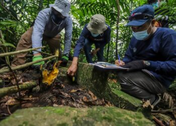 Tim TACB Batam Mendokumentasikan dan Mencatat Situs Sejarah Peninggalan Belanda di Pulau Boyan, Kecamatan Bulang, Kota Batam, Kepulauan Riau. (Foto: Tim TACB BATAM)